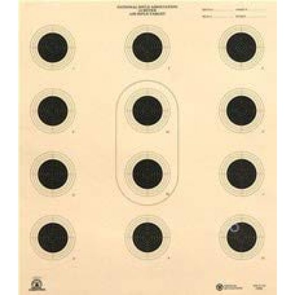 CHLTargets.com Airsoft Target 1 CHLTargets.com Official NRA AR 5/10 Shooting Targets