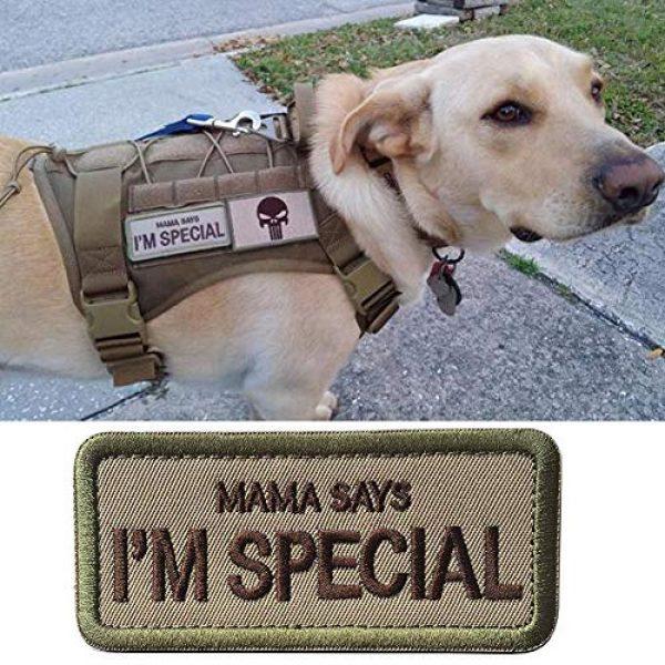 WindCar Airsoft Morale Patch 2 WindCar Tactical Morale Military Patches 2 pcs Funny Emblem Badge Mama Says I'm Special (2 pcs - Mama Says I'm Special)