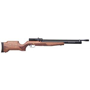 Benjamin Air Rifle 1 Benjamin Cayden BPC22W .22-Caliber PCP-Powered Multi-Shot Side Lever Hunting Air Rifle