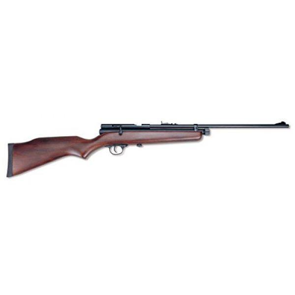 "Beeman Air Rifle 1 Beeman, SAG CO2 Air Rifle, .177 Caliber, 21.50"" Barrel, Hardwood Stock/Blued"