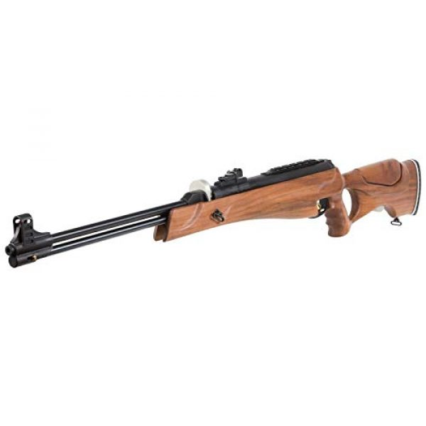 Wearable4U Air Rifle 3 Hatsan Proxima Walnut Air Rifle with Included Wearable4U 100x Paper Targets and Pellets Bundle