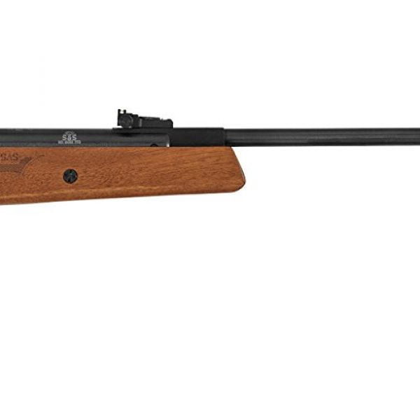 Hatsan Air Rifle 4 Hatsan Mod 95 Vortex Combo, .25cal Airgun, Walnut (HC9525VORT)