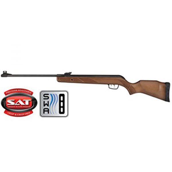 Gamo Air Rifle 1 Gamo Hunter Big Cat Air Rifle air rifle