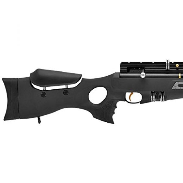 Wearable4U Air Rifle 4 Hatsan BT65SB Elite Quiet Energy Air Rifle with Included Wearable4U 100x Paper Targets and Lead Pellets Bundle