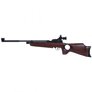 Beeman Air Rifle 1 Beeman, SAG CO2 Air Rifle.22 Caliber with Thumbhole Stock