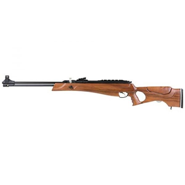 Wearable4U Air Rifle 6 Hatsan Proxima Walnut Air Rifle with Included Wearable4U 100x Paper Targets and Pellets Bundle