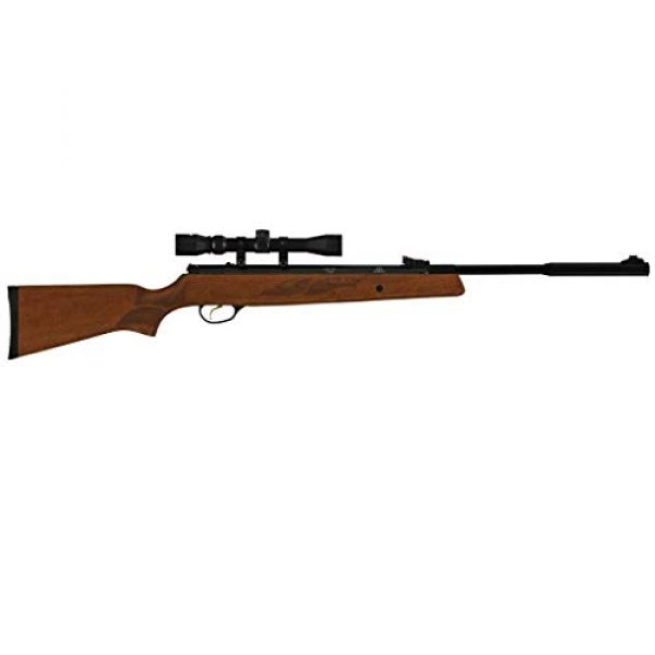 Wearable4U Air Rifle 3 Hatsan Mod 95 Vortex Combo QuietEnergy QE Air Rifle, Walnut with Included Wearable4U 100x Paper Targets and Lead Pellets Bundle