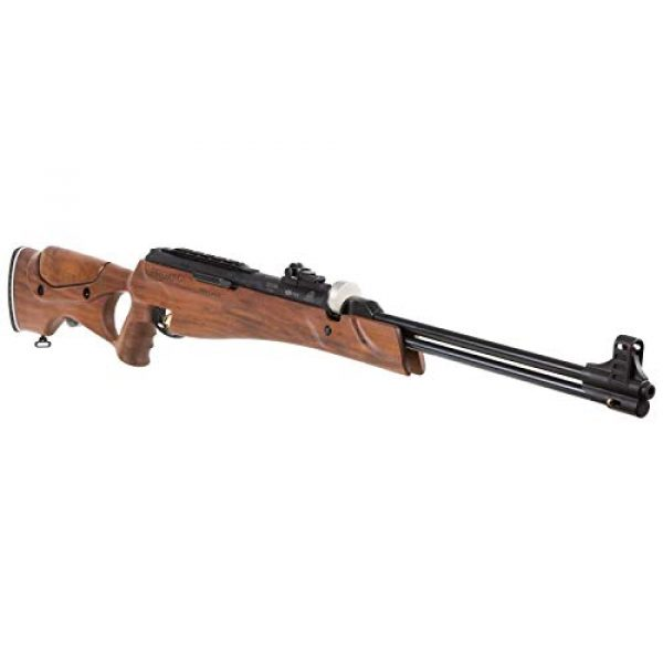 Wearable4U Air Rifle 4 Hatsan Proxima Walnut Air Rifle with Included Wearable4U 100x Paper Targets and Pellets Bundle