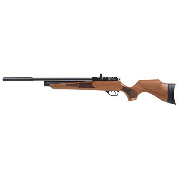 Wearable4U Air Rifle 6 Wearable4U Hatsan Hydra New .25 Cal Air Rifle with Included 100x Paper Targets and 150x .25cal Lead Pellets Bundle