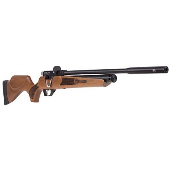 Wearable4U Air Rifle 4 Wearable4U Hatsan Hydra New .25 Cal Air Rifle with Included 100x Paper Targets and 150x .25cal Lead Pellets Bundle
