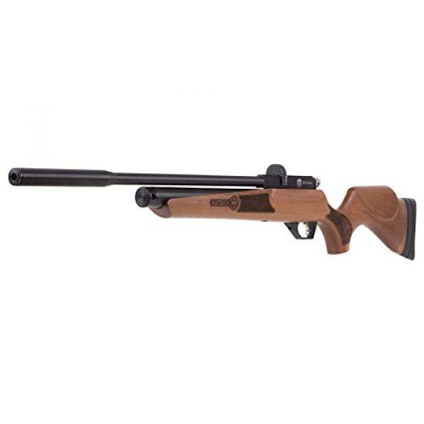 Wearable4U Air Rifle 3 Wearable4U Hatsan Hydra New .25 Cal Air Rifle with Included 100x Paper Targets and 150x .25cal Lead Pellets Bundle