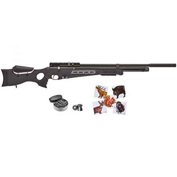 Wearable4U Air Rifle 1 Hatsan BT65SB Elite Quiet Energy Air Rifle with Included Wearable4U 100x Paper Targets and Lead Pellets Bundle