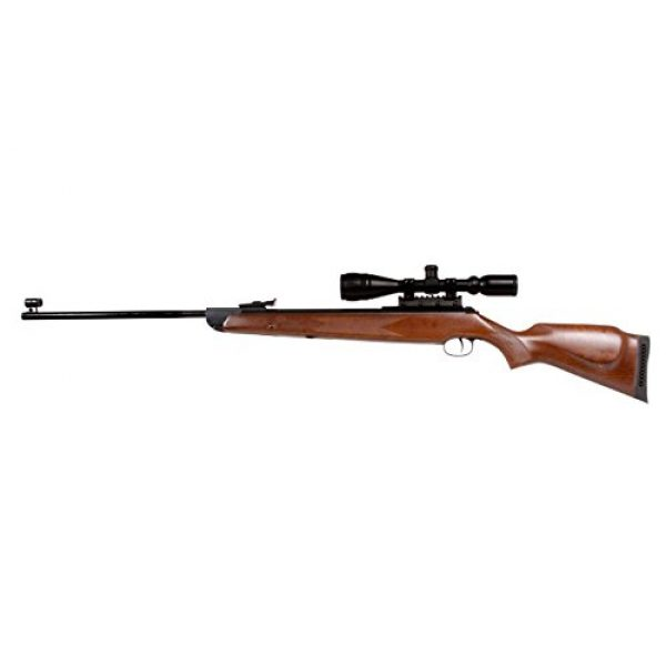 RWS Air Rifle 1 Diana RWS 350 Magnum Striker Combo air rifle