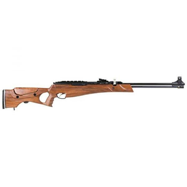Wearable4U Air Rifle 5 Hatsan Proxima Walnut Air Rifle with Included Wearable4U 100x Paper Targets and Pellets Bundle