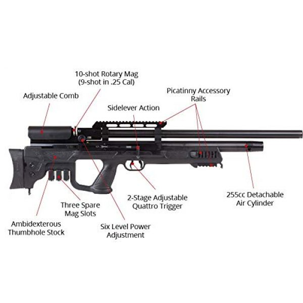 Wearable4U Air Rifle 2 Hatsan Gladius Long Air Rifle with Included Wearable4U 100x Paper Targets and Lead Pellets Bundle