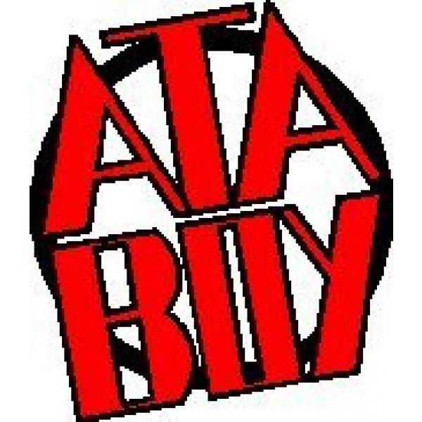 Ata-Boy Airsoft Morale Patch 4 Ata-Boy Firefly Independent Officially Licensed Patch, Pin and More!