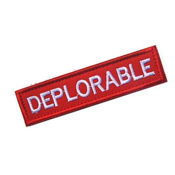 Embroidery Patch Airsoft Morale Patch 2 Deplorable Military Hook Loop Tactics Morale Embroidered Patch (color2)