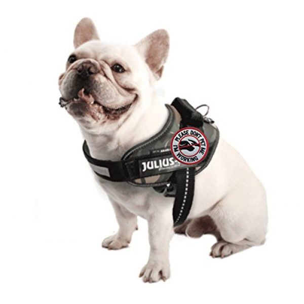 U-LIAN Airsoft Morale Patch 4 U-LIAN 2 Pcs Service Dog Working Do Not Touch Tactical Morale Patch for Dog Vest Harness with Hook Loop Fastener - Please Do Not Pet Me I'm Working Badge