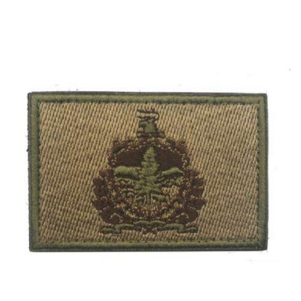 Tactical Embroidery Patch Airsoft Morale Patch 1 State Flag of Vermont Embroidery Patch Military Tactical Morale Patch Badges Emblem Applique Hook Patches for Clothes Backpack Accessories