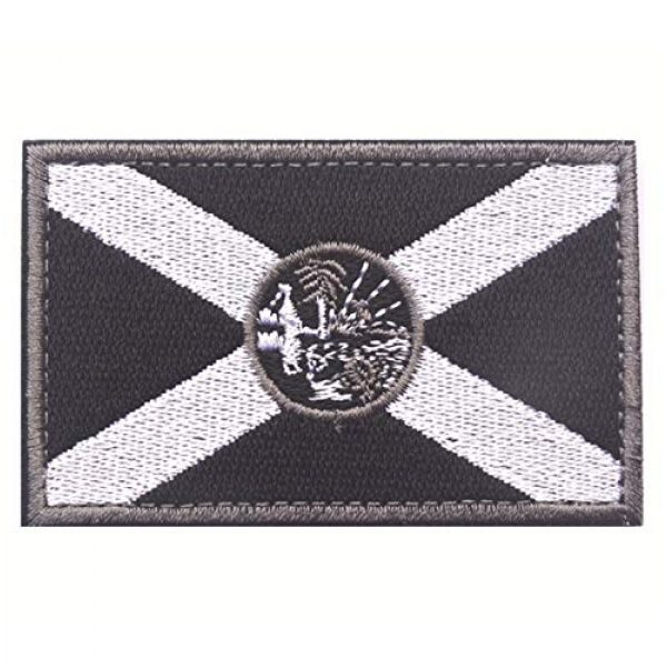 JoJoHouse Airsoft Morale Patch 2 States Flag Patches of the U.S Country Embroidery Morale Velcro Patch JHZ55